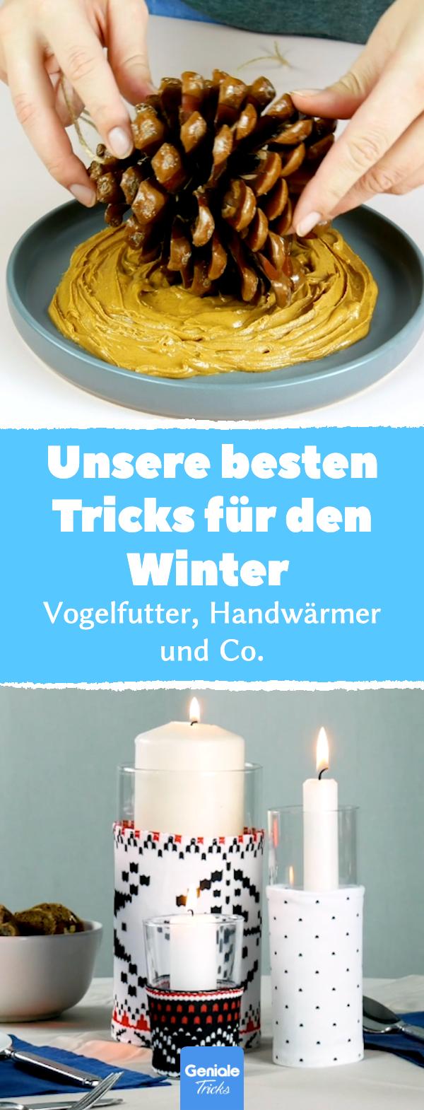 Die besten Tricks für den Winter   DIY Ideen und Vogelfutter