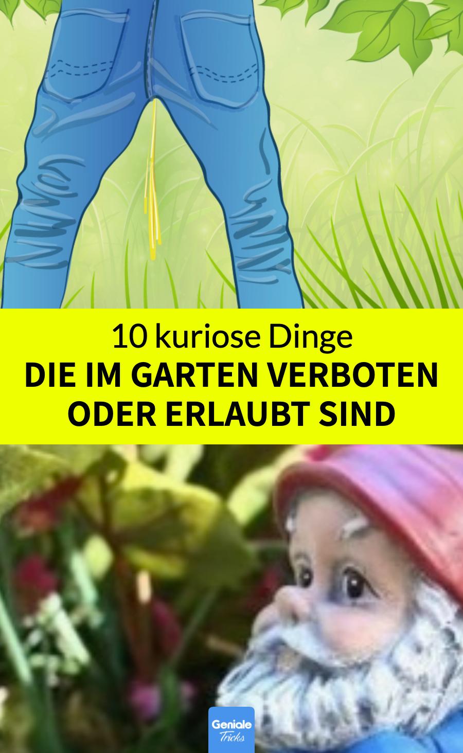 10 Dinge, die unerwarteterweise im Garten verboten oder erlaubt sind.